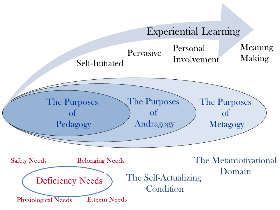 Figure 2. Activating the Growth Path through Experiential Learning