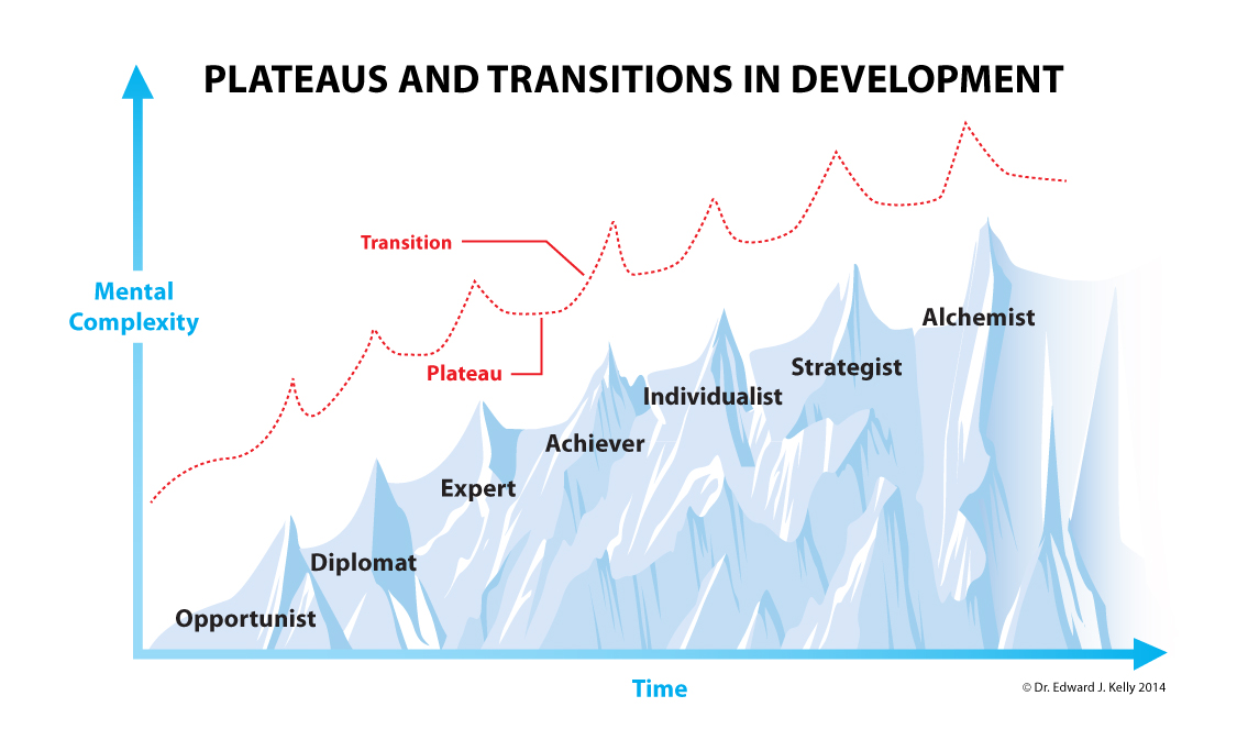 Figure 1. Plateaus & transitions in development