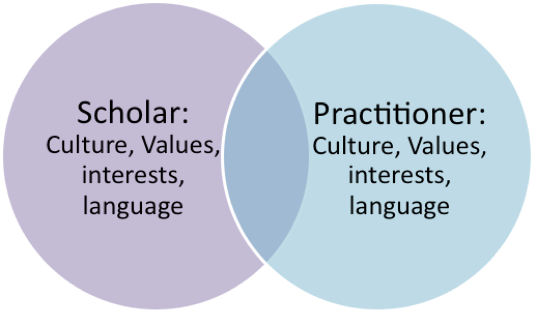 Figure 1: Intersection of scholar-practitioner worlds