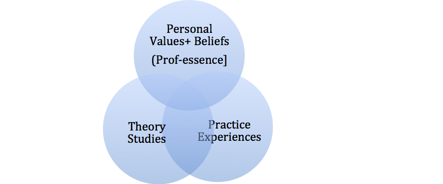 Figure 1. A Professional Development Place – of Intersection and Integration