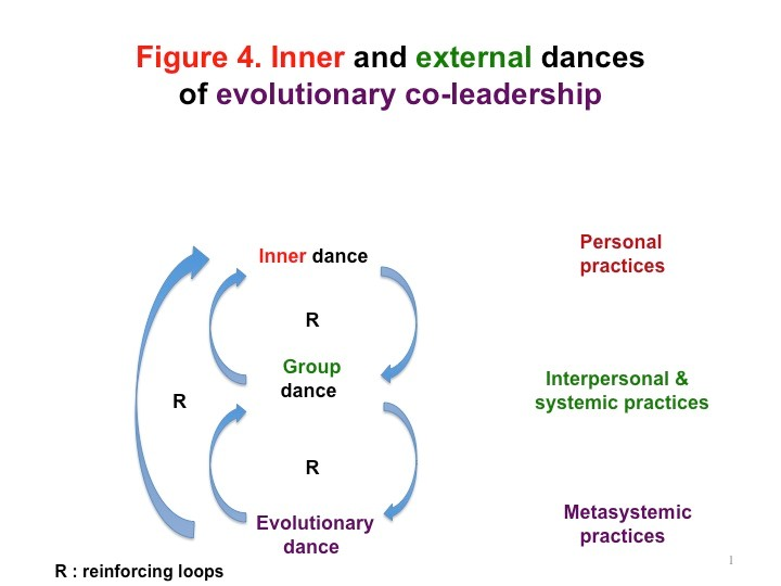 Figure 4 Alain Gauthier Exploring the Triple Impact of Evolutionary Co-leadership