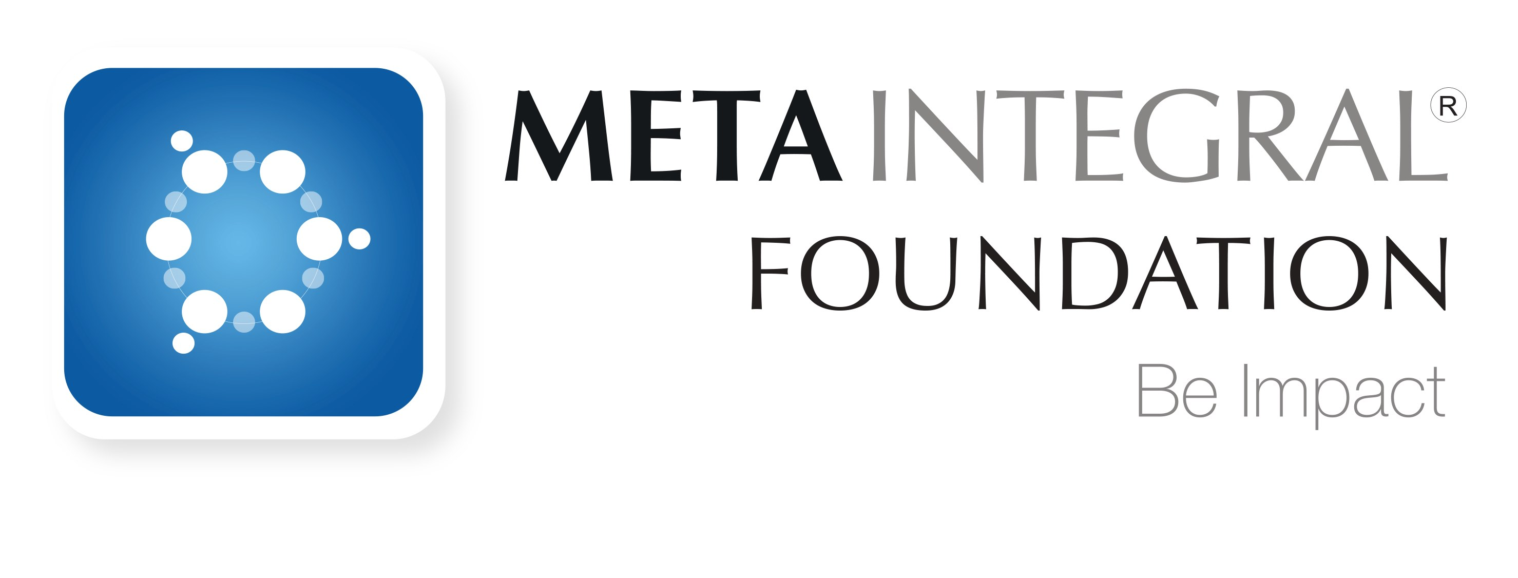 metaintegral logo