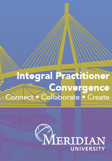Integral Practitioner Convergence