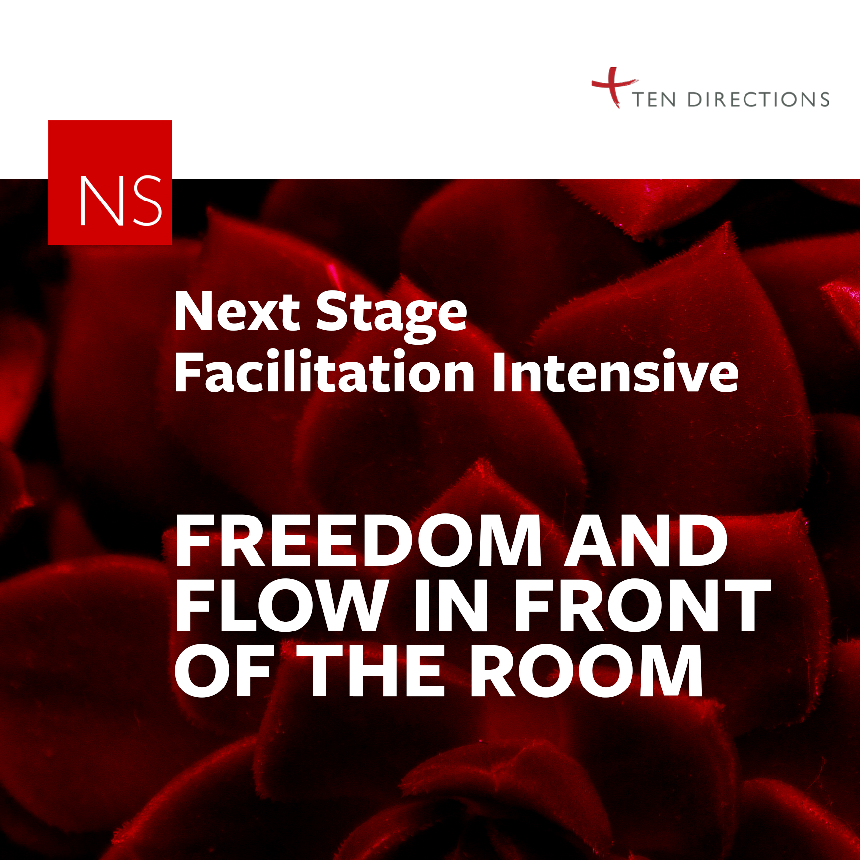 Next Stage Facilitation
