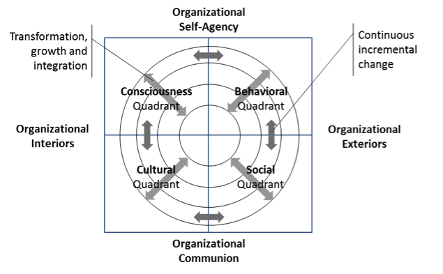 This version of the AQAL framework was adapted from Edwards (2005) and Cacioppe and Edwards (2005a).
