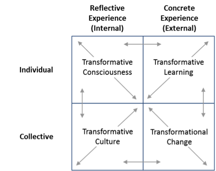 Figure 2. The transformational change holon. The individual quadrants in this figure correspond to the developmental lines (changes) and levels (transformations) in an organization.